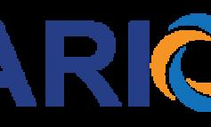 LARION-INTERSHIP 2018